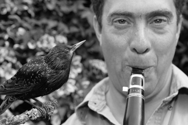 David Rothenberg | Bird, Whale, Bug - Music from Nature | Photo: Promo, Courtesy of Endemol/BBC4
